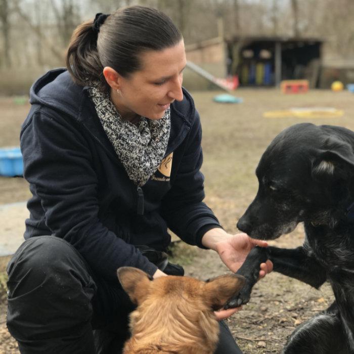 4 hundetrainerin hundeschule freude am hund anja dellin | Freude am Hund München