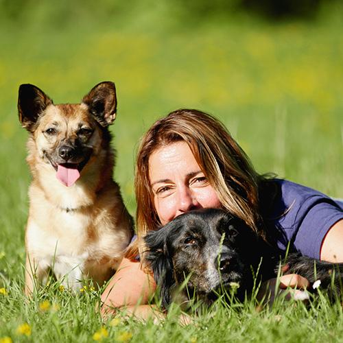 die hundeschule | Freude am Hund München