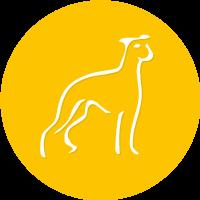Freude am Hund Logo