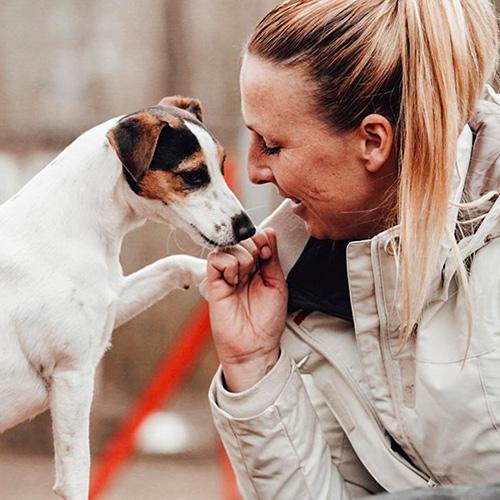 hta | Freude am Hund München