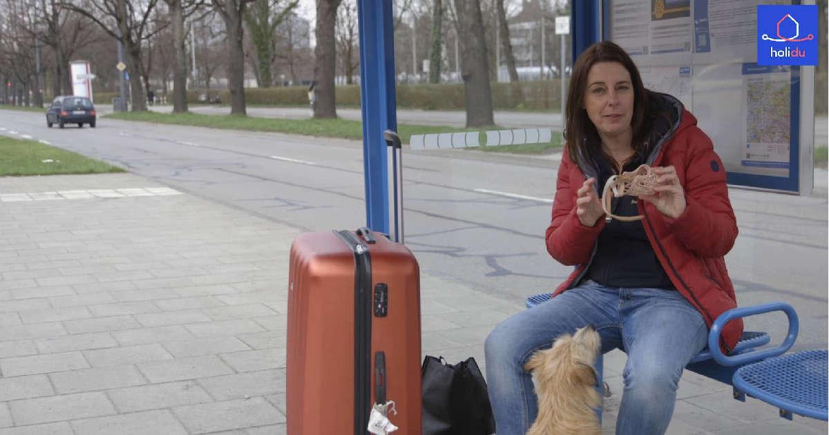 hundetipp reisen mit hund im auto  zug und flugzeug | Freude am Hund München