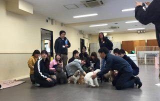 internationale kooperation hundeschule muenchen tokio japan 3   Freude am Hund München