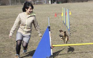 internationale kooperation hundeschule muenchen tokio japan 7   Freude am Hund München